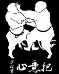 Shaolin Traditional Wushu Institute
